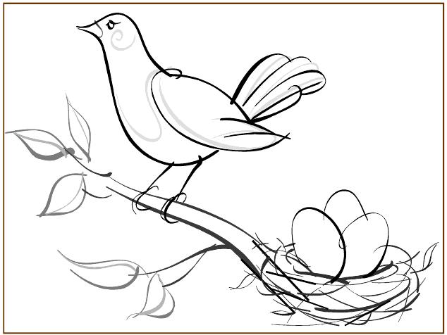 Birds Of Grindstone And Hecla